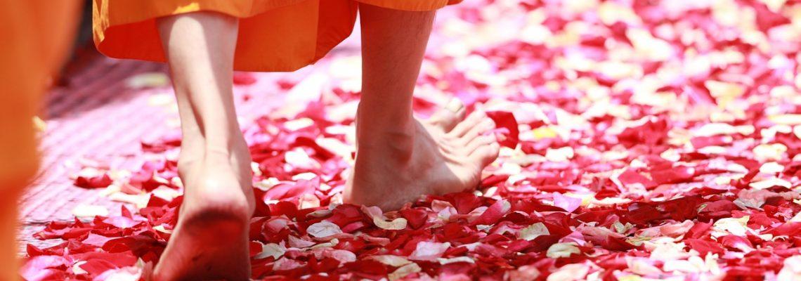 Mindfulness and Meditation Practitioner